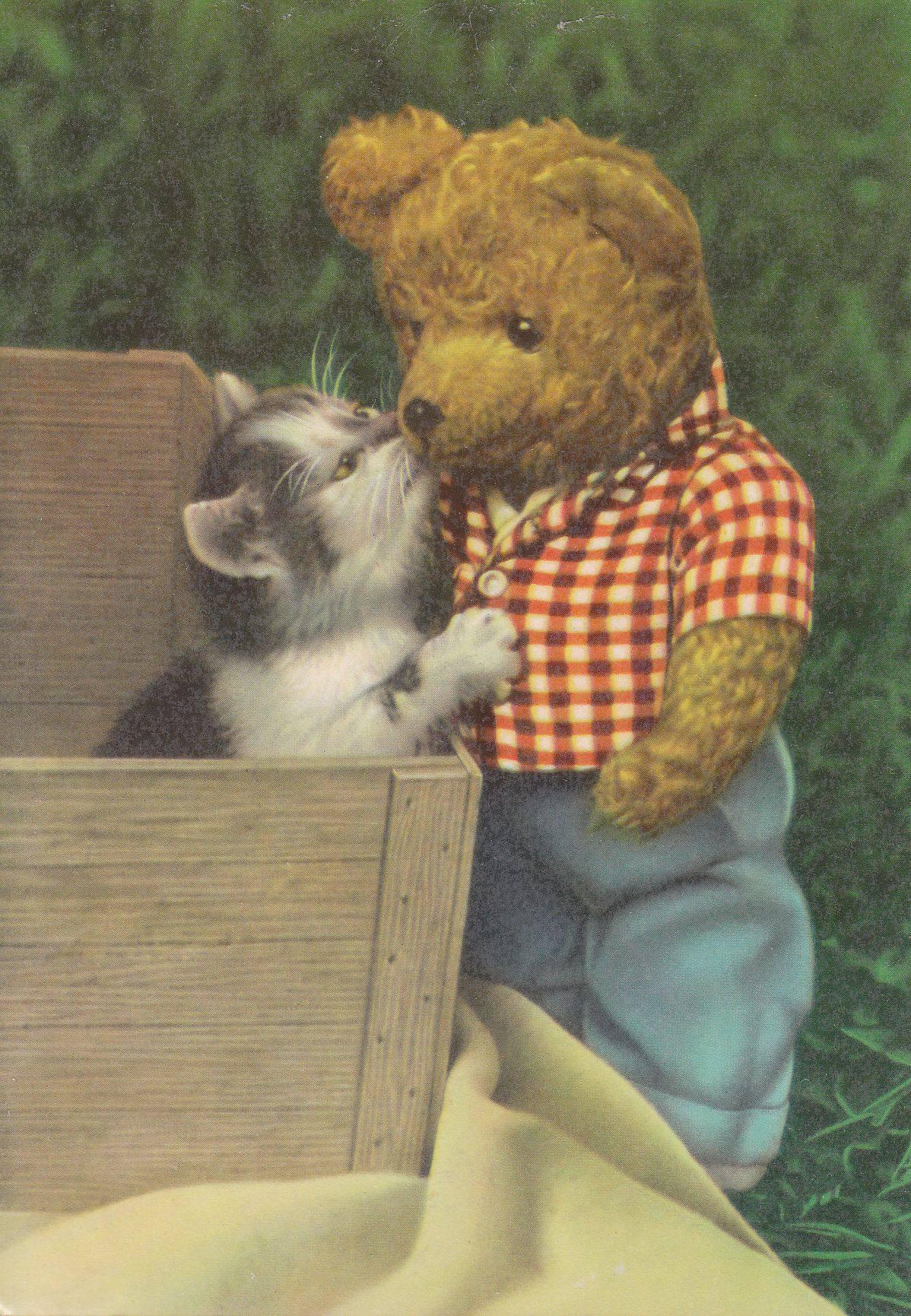 Медведь с котенком картинки